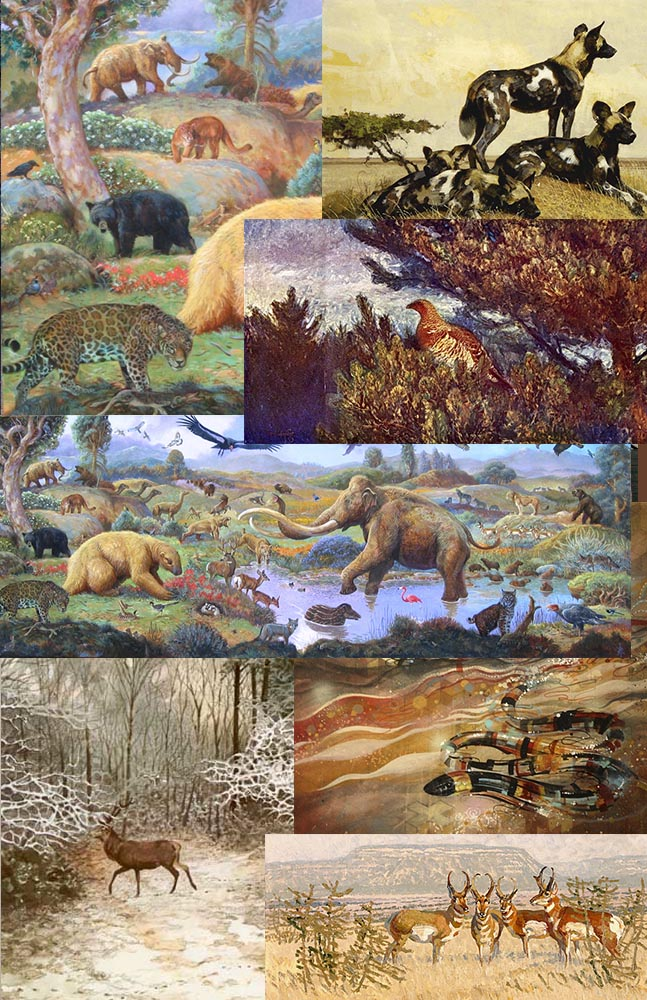 Moodboard for my next big painting. I'm going to do a forest scene with multiple species inhabiting the same space.   From top left-William Stout, Bob Kuhn, Bruno Liljefors,William Stout, Robert Bateman, David Hale, Robert Lougheed