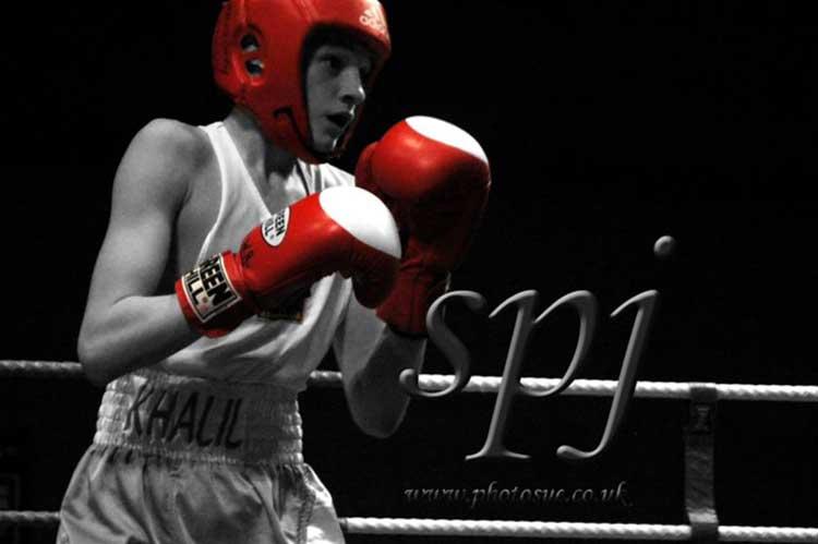Gladstone-Grooming-Blog-bayan-boxing.jpg