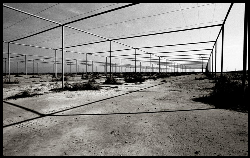 Delta de l'Ebre 1999
