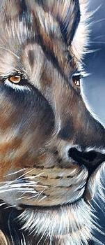 lion-ilse-kleyn.jpg