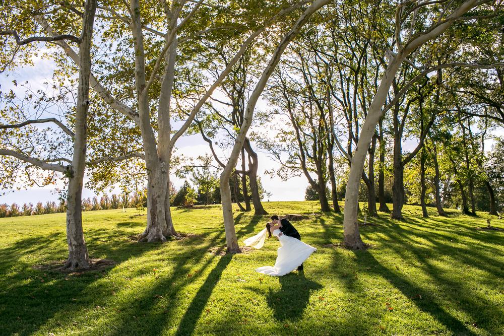 Forest-Park-Wedding