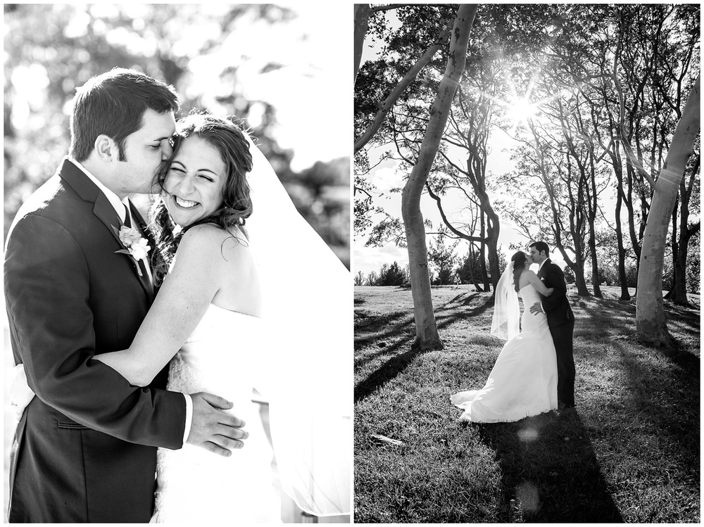 St-Louis-Wedding-Photographers-051.JPG