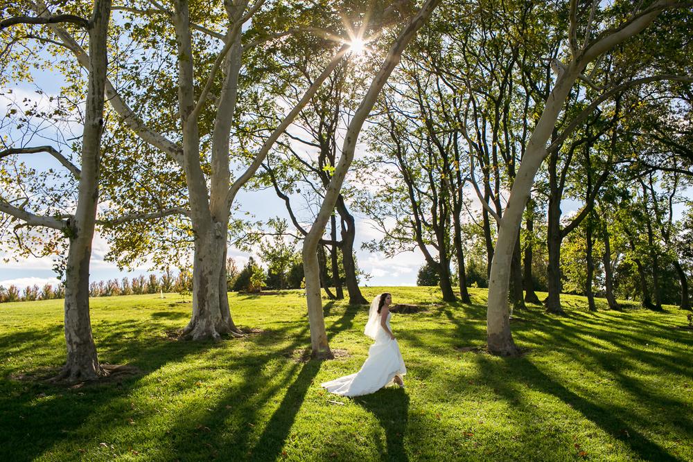 St-Louis-Wedding-Photographers-050.JPG
