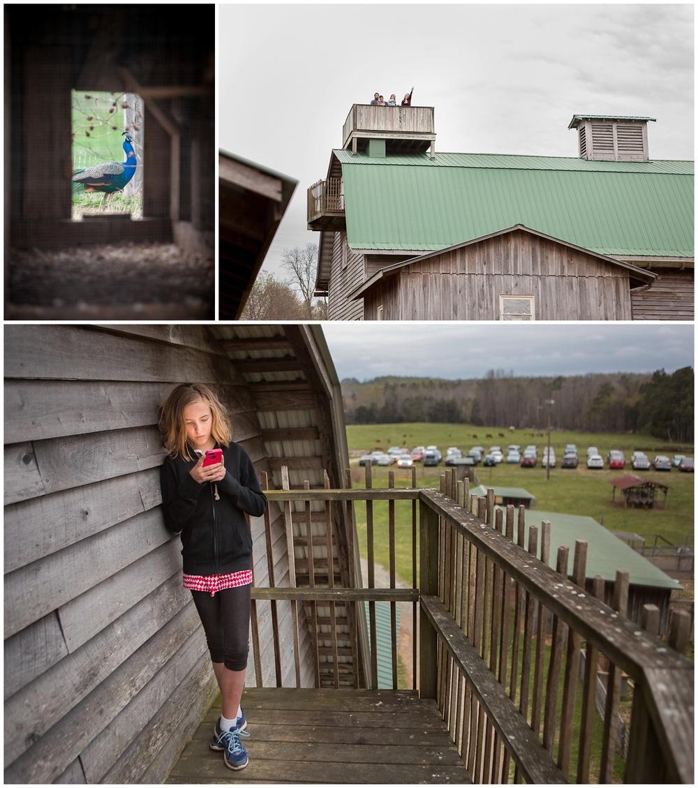 Hodgin-Valley-Farm-032.JPG