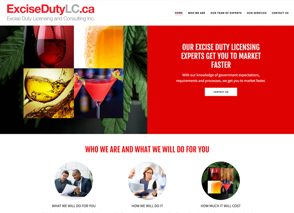 Excise Duty Licensing and Consulting