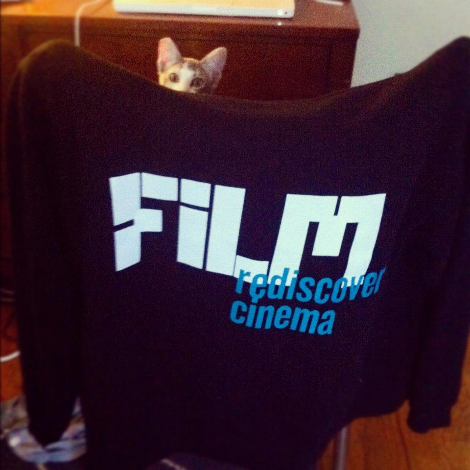 SFIFF staffer Zoe's new kitten, Liz Lemon, totally digs the merch.