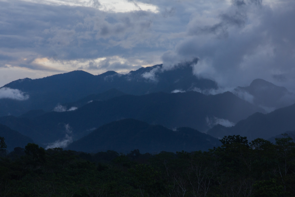 High Amazon Vistas in the San Martin Region
