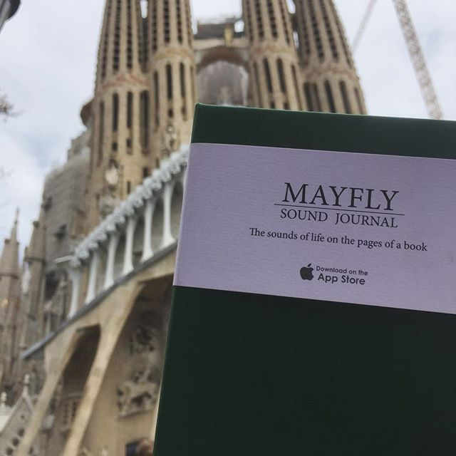 The mayfly is on it's way to capture the sights and sounds of La Sagrada Familia!