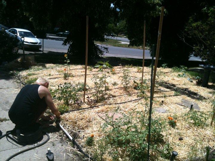 Tending my first garden in 2009