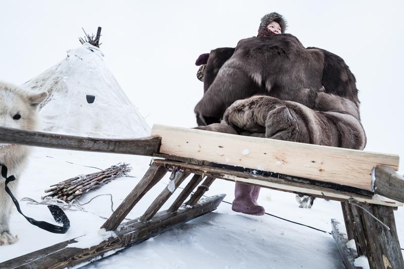 northern-nomads-3.jpg