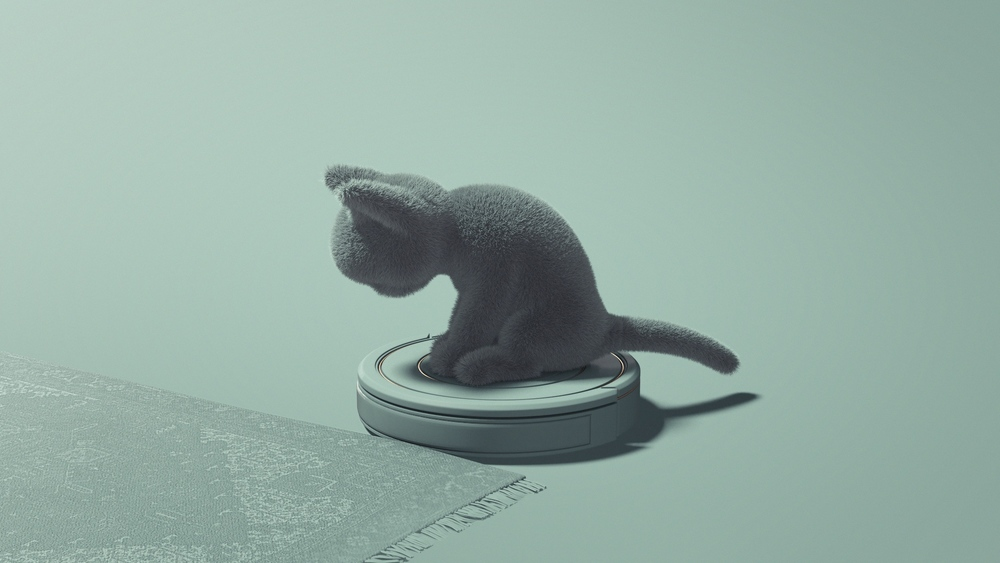 05_Cat_00000.jpeg