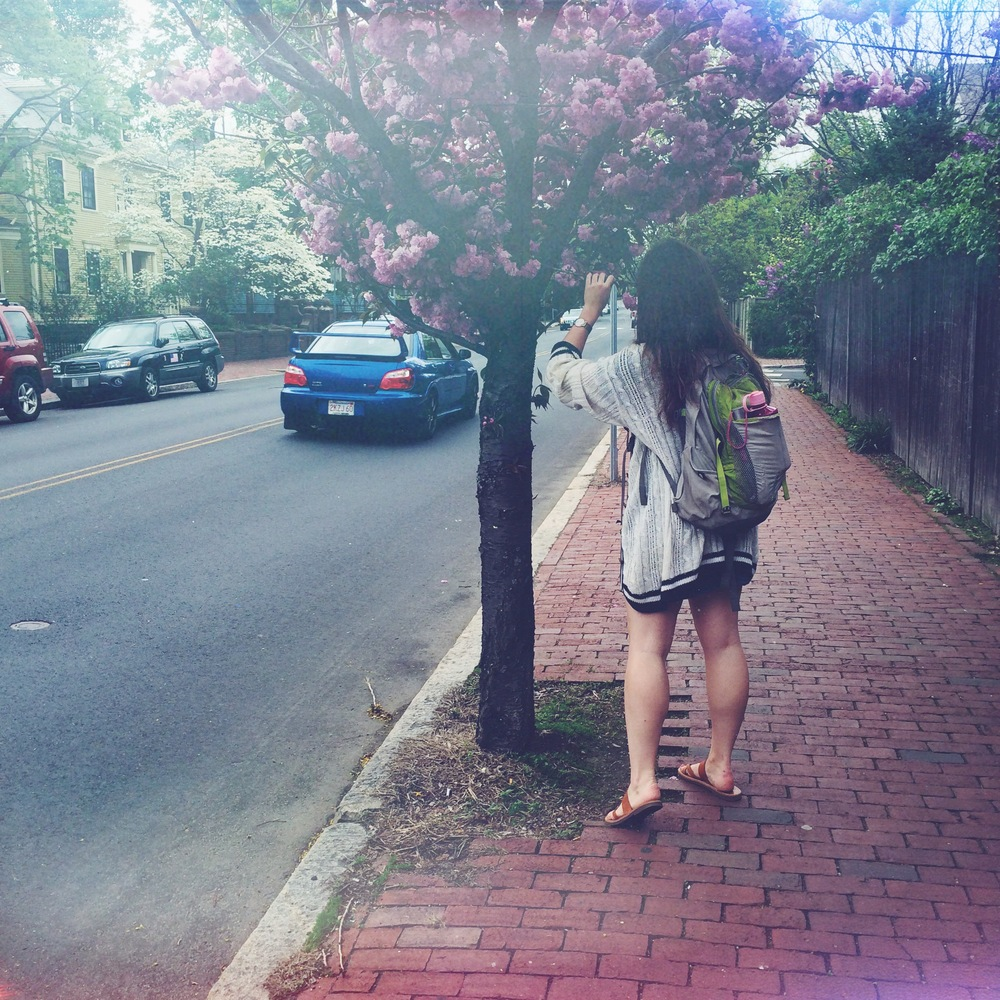 "Spring time in Cambridge. Stopping to smell the ""roses"" with the loveliest. Cheers to the last days of backpack wearing."