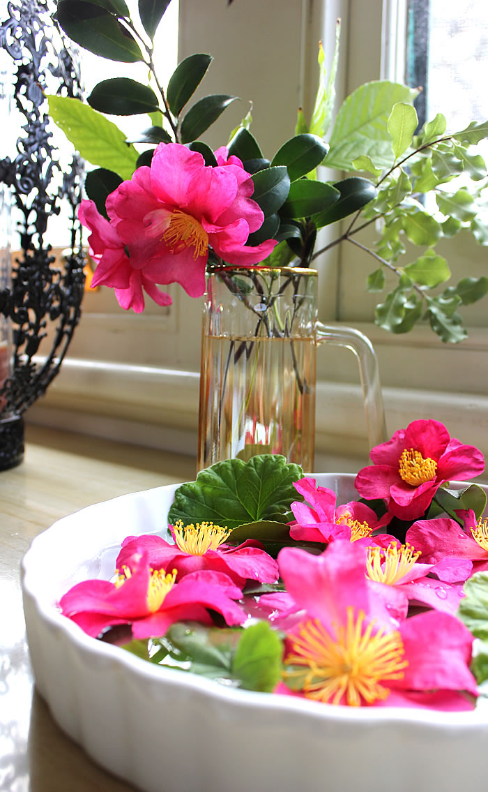 BRIGHT PINK CAMELLIA FLOWERS BOUQUET FLOATNG BOWL