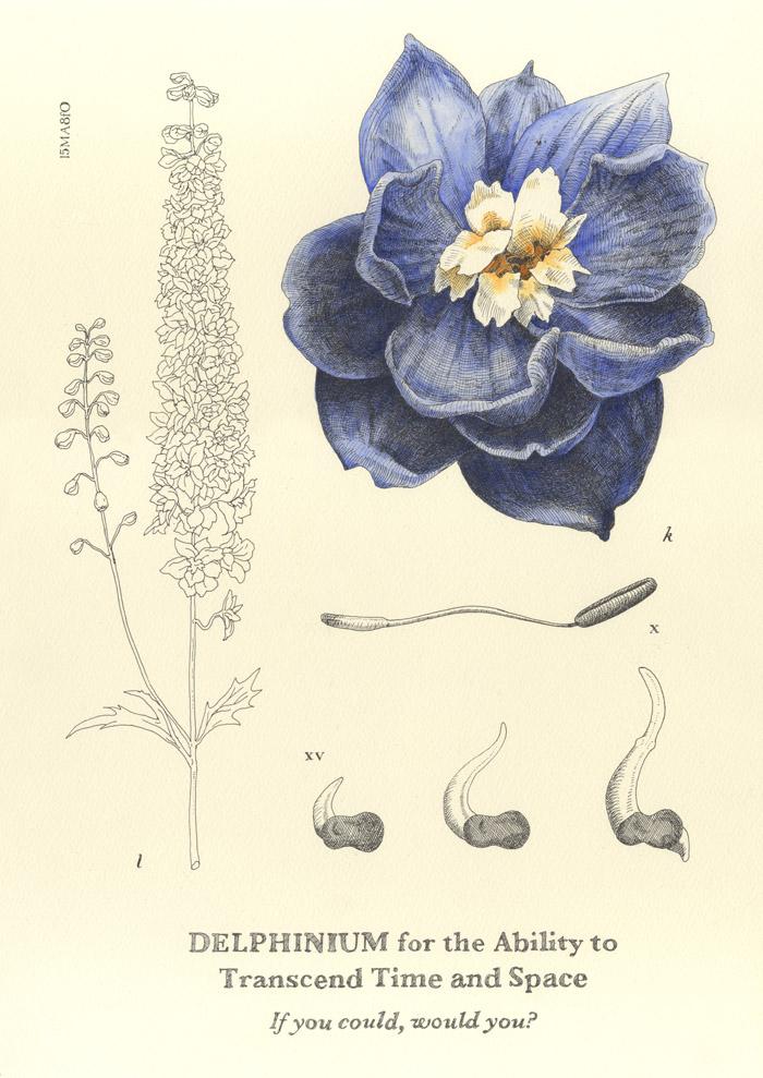 delphinium artwork patrick heide