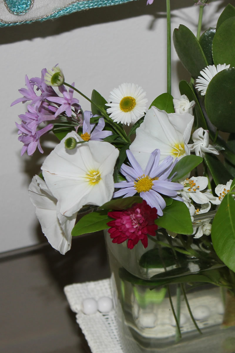 1st spring posy from the garden