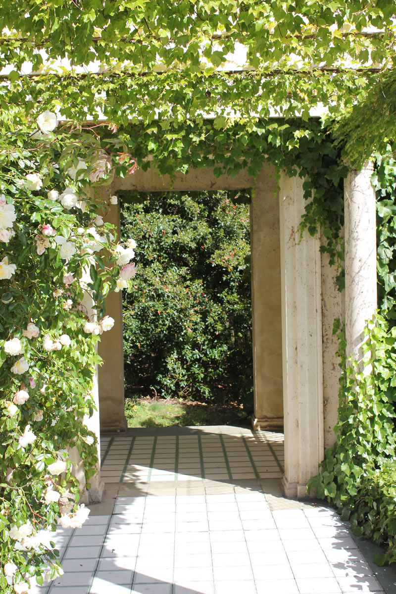 rippon lea estate pergola of roses
