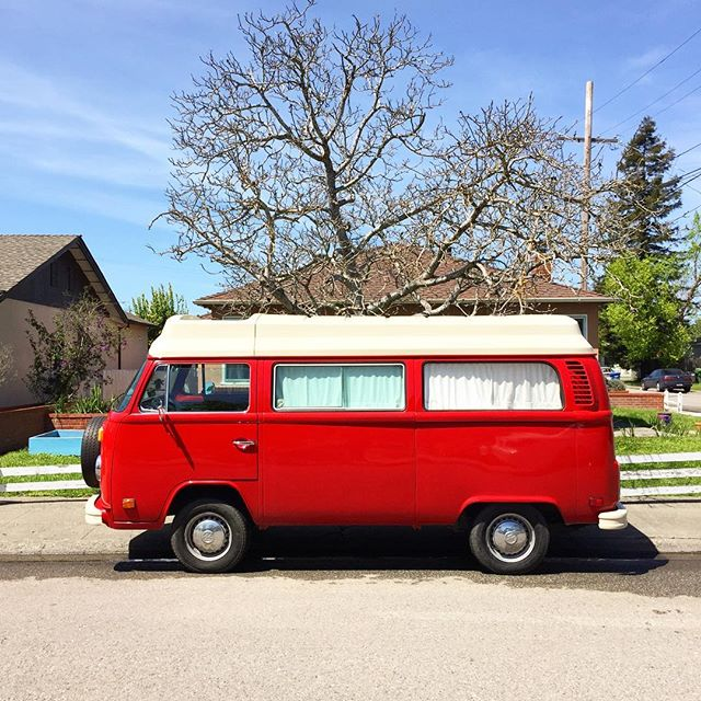 Slightly different neighborhood this time, but the same NorCal vibe ✌️ #petaluma #sonomacounty #vwbus