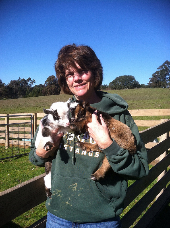Mom holding baby goats