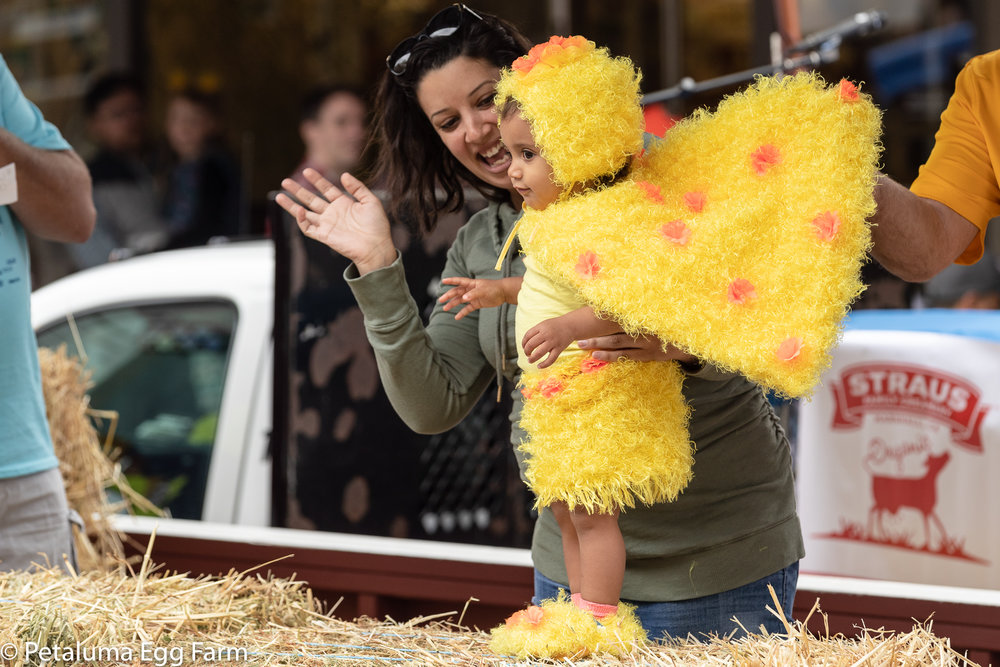 cutest chick 2018 - 2000px-2609.jpg