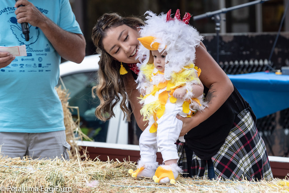 cutest chick 2018 - 2000px-4100.jpg