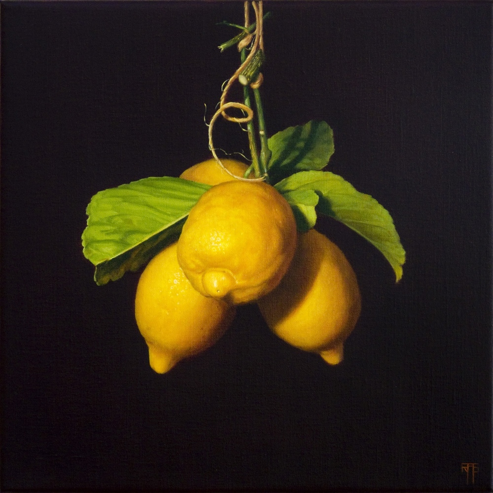 Four Lemons, Oil on Linen, 35x35cm