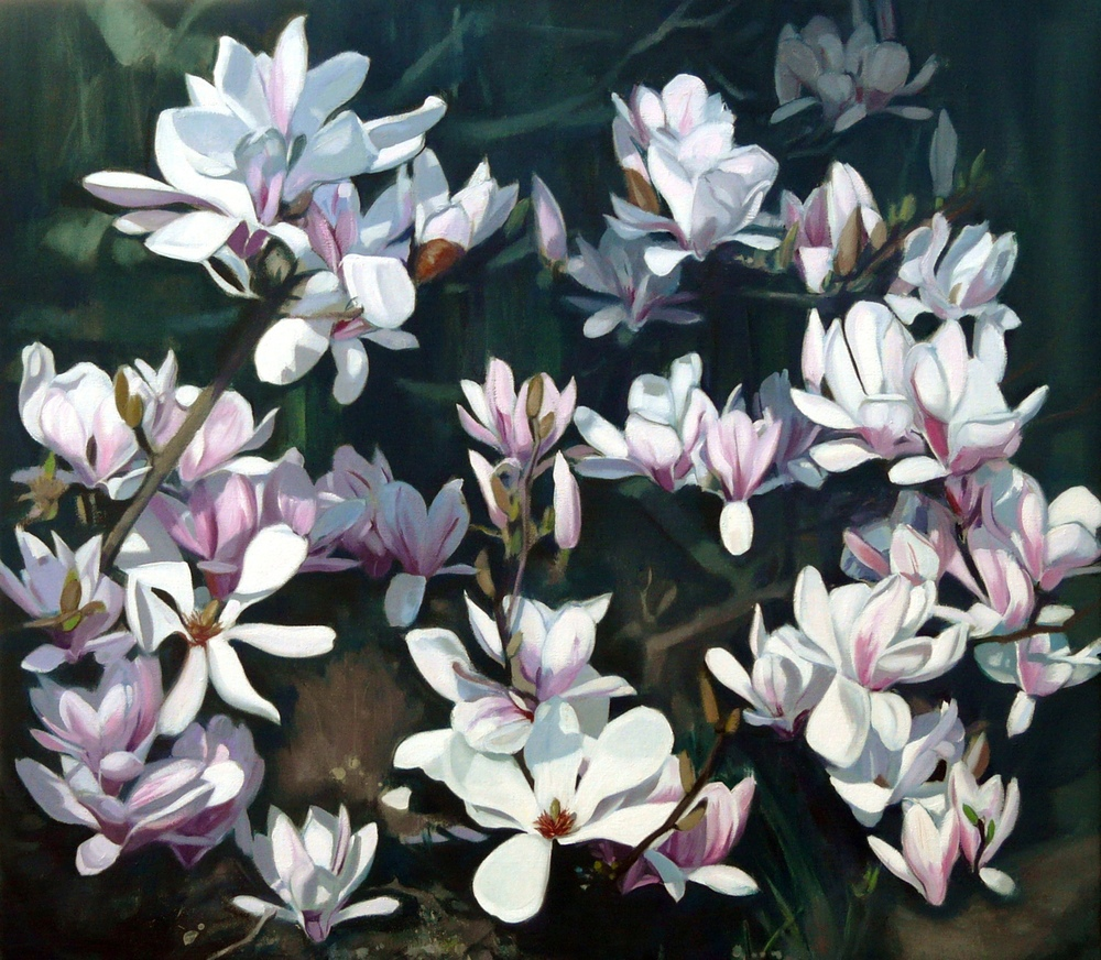 Magnolia, Oil on Linen, 75x85cm  Private Collection