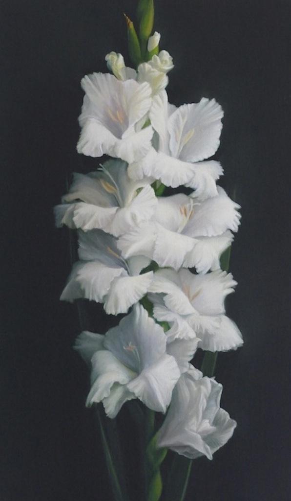Gladioli. 46x27cm. Oil on linen. Private collection.