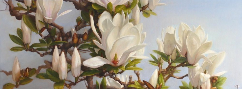 Magnolias. Oil on linen. 30x80cm. Available at The Biscuit Factory