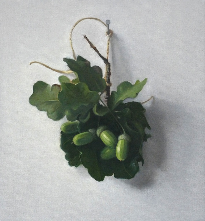 Acorns. Oil on linen. 27x25cm.  10.5x10 in. Available, please contact the artist