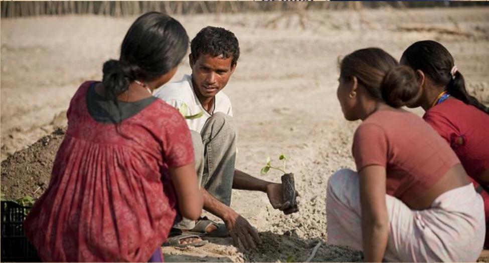 Progetti di agricoltura       alveo   in   Bangladesh