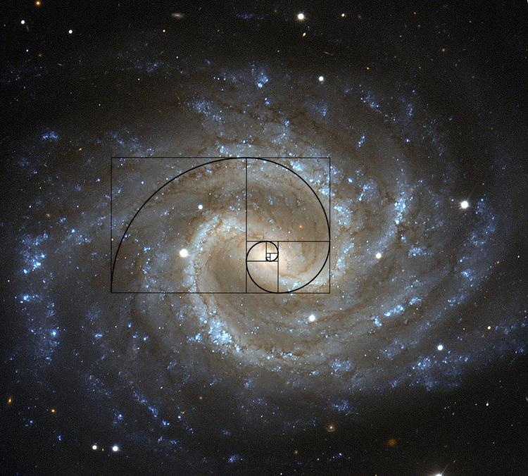 NGC 1365
