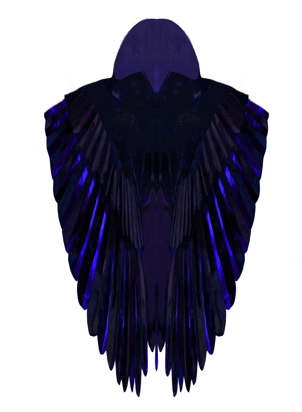 American Crow Cape (front)