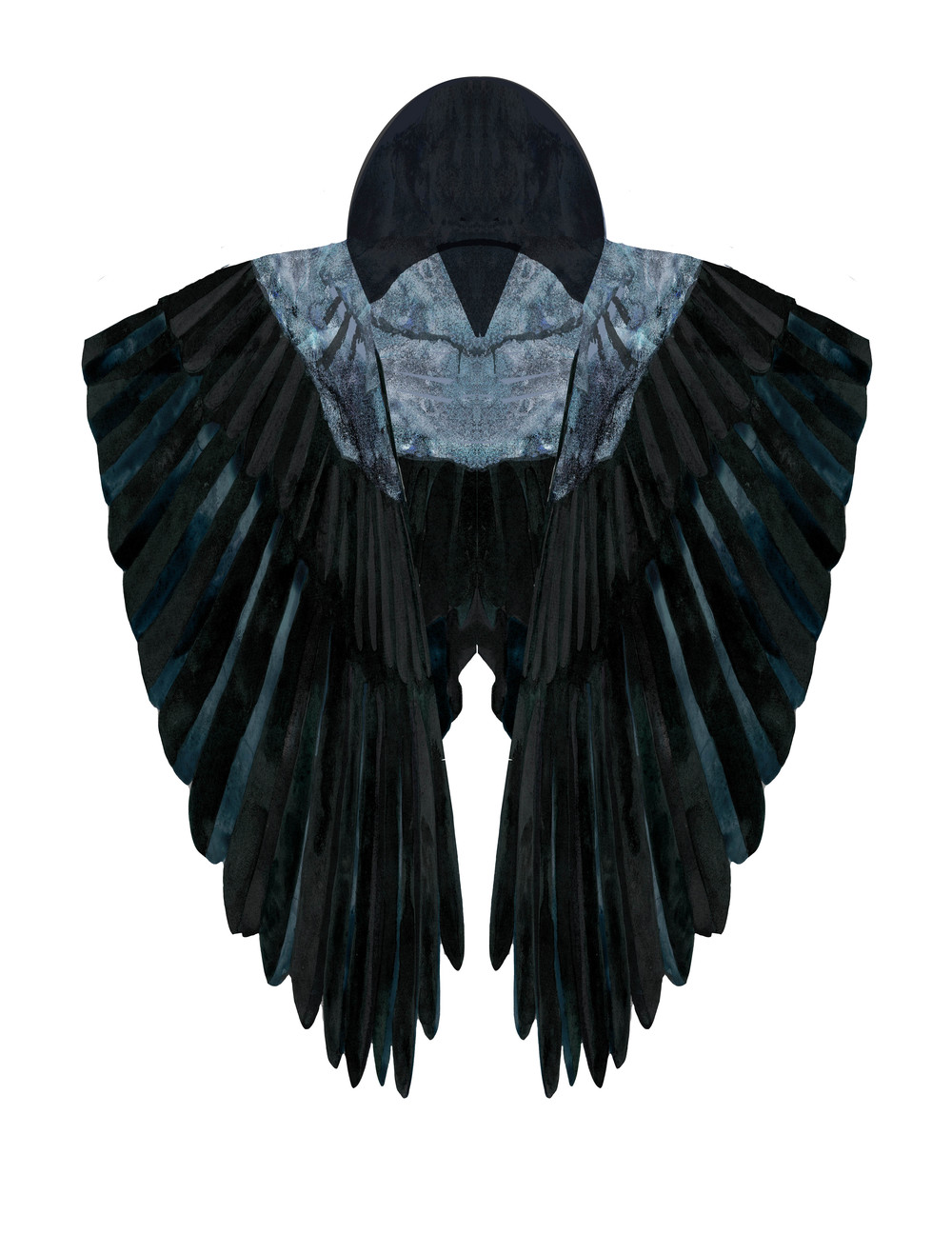 Hooded Crow Cape (front)
