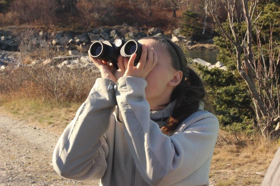 sighting.jpg