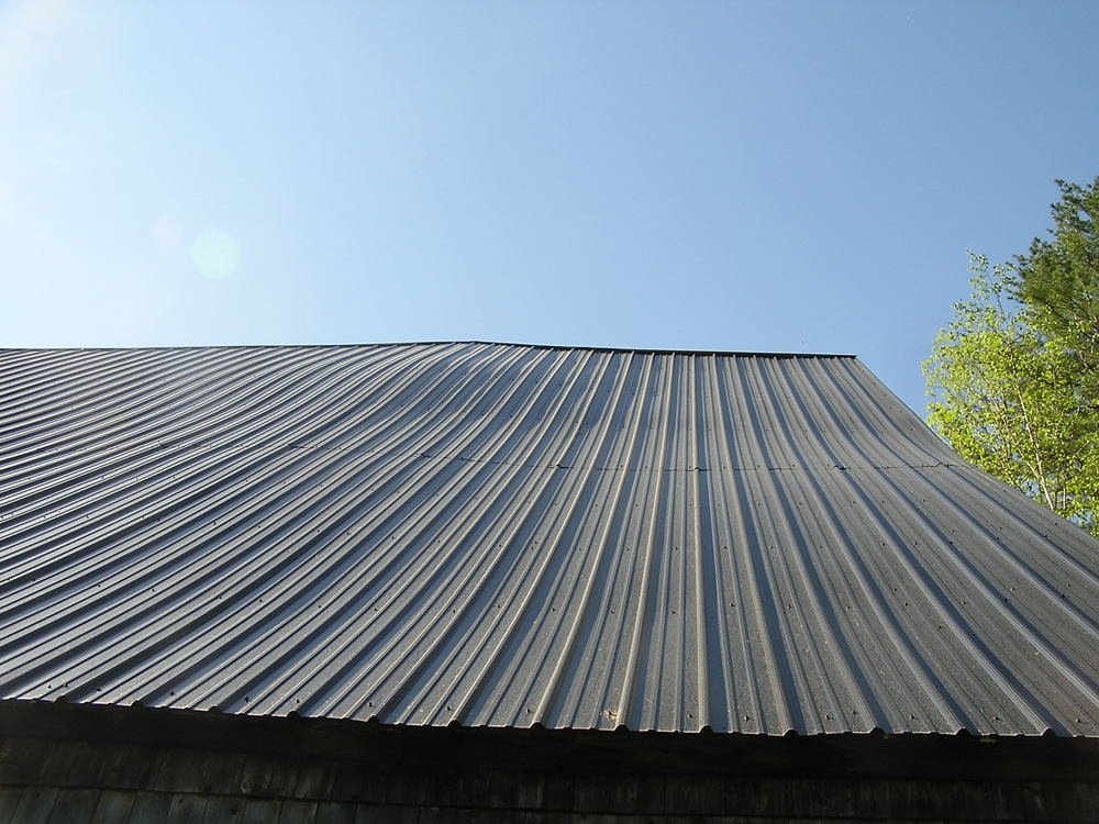 As sills slowly rot they cause an uneven settling of the barn into the earth. The bump in this roof is evidence of that.
