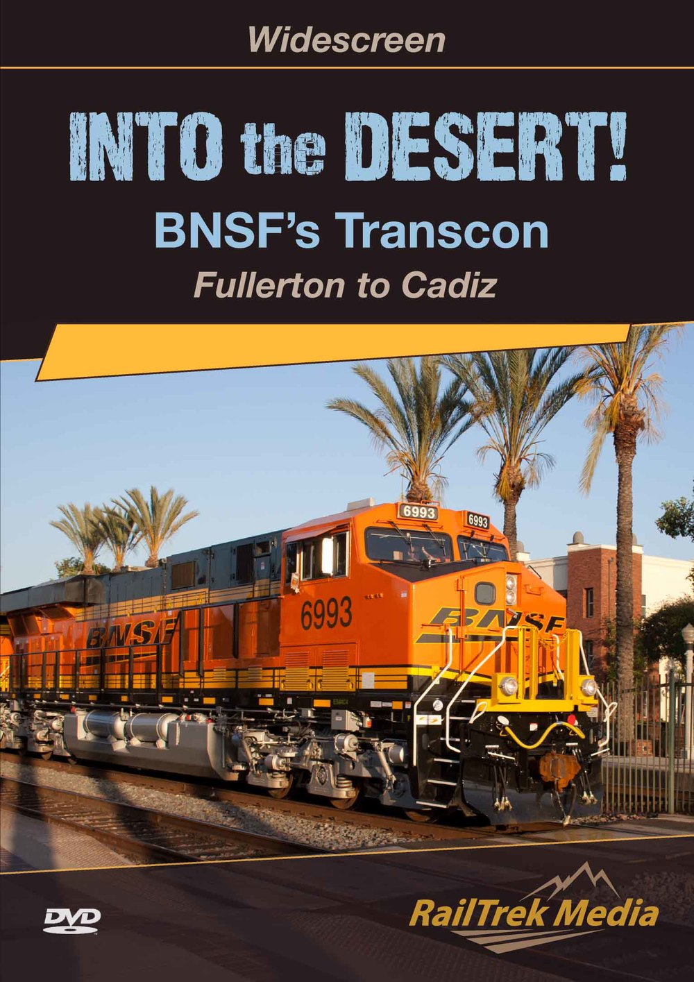 """Into the Desert!"" Widescreen Program DVD Cover"