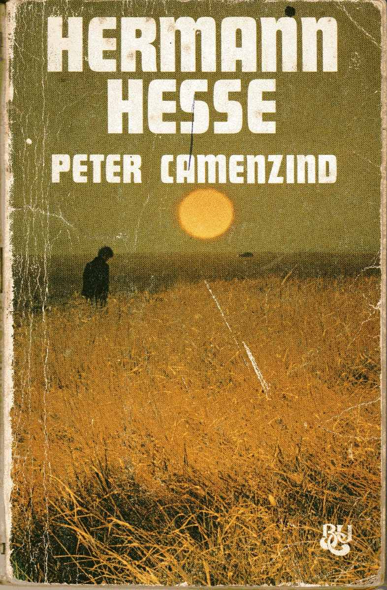 peter-camenzind-hermann-hesse-D_NQ_NP_19759-MLU20176491945_102014-F.jpg