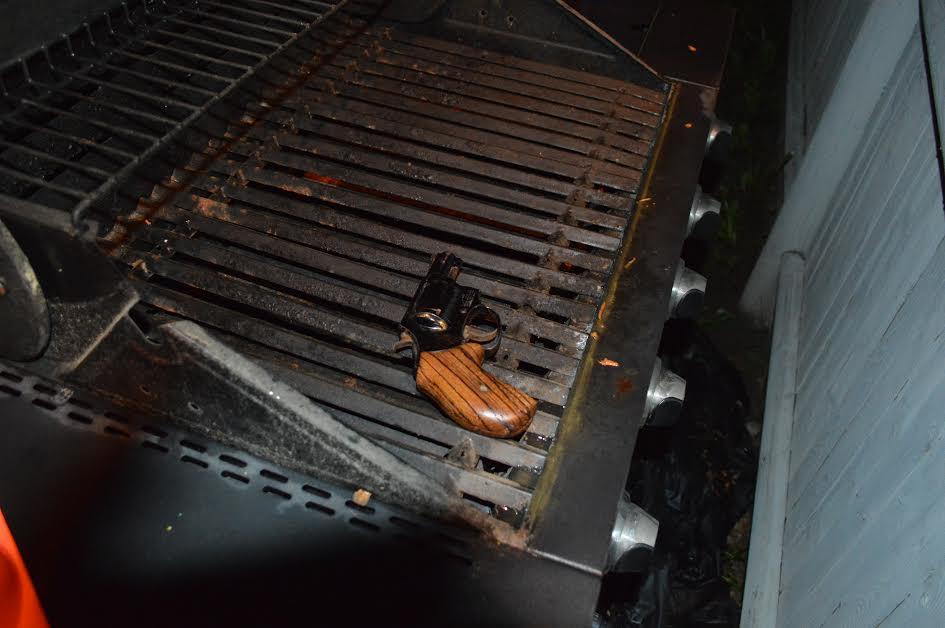 gril firearm.jpg