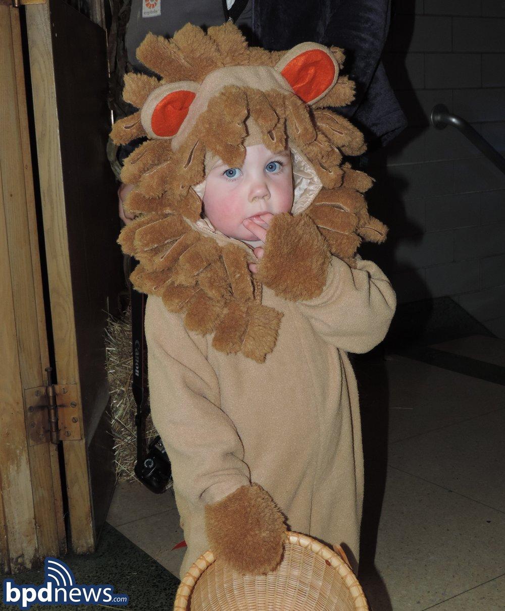 Lion Kid.jpg