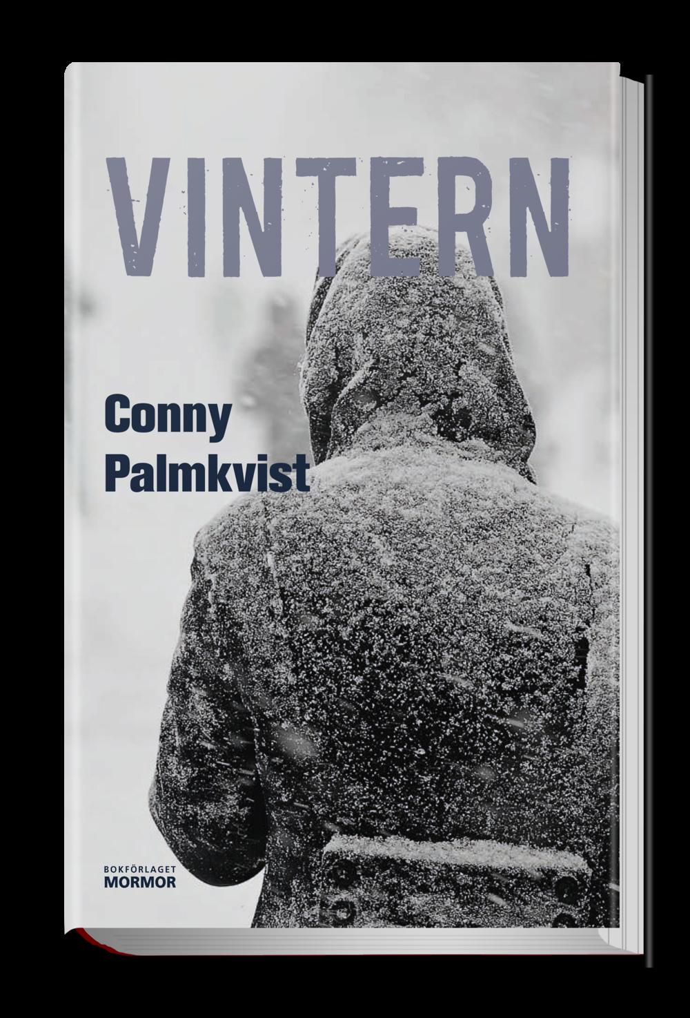 Vintern_4.png
