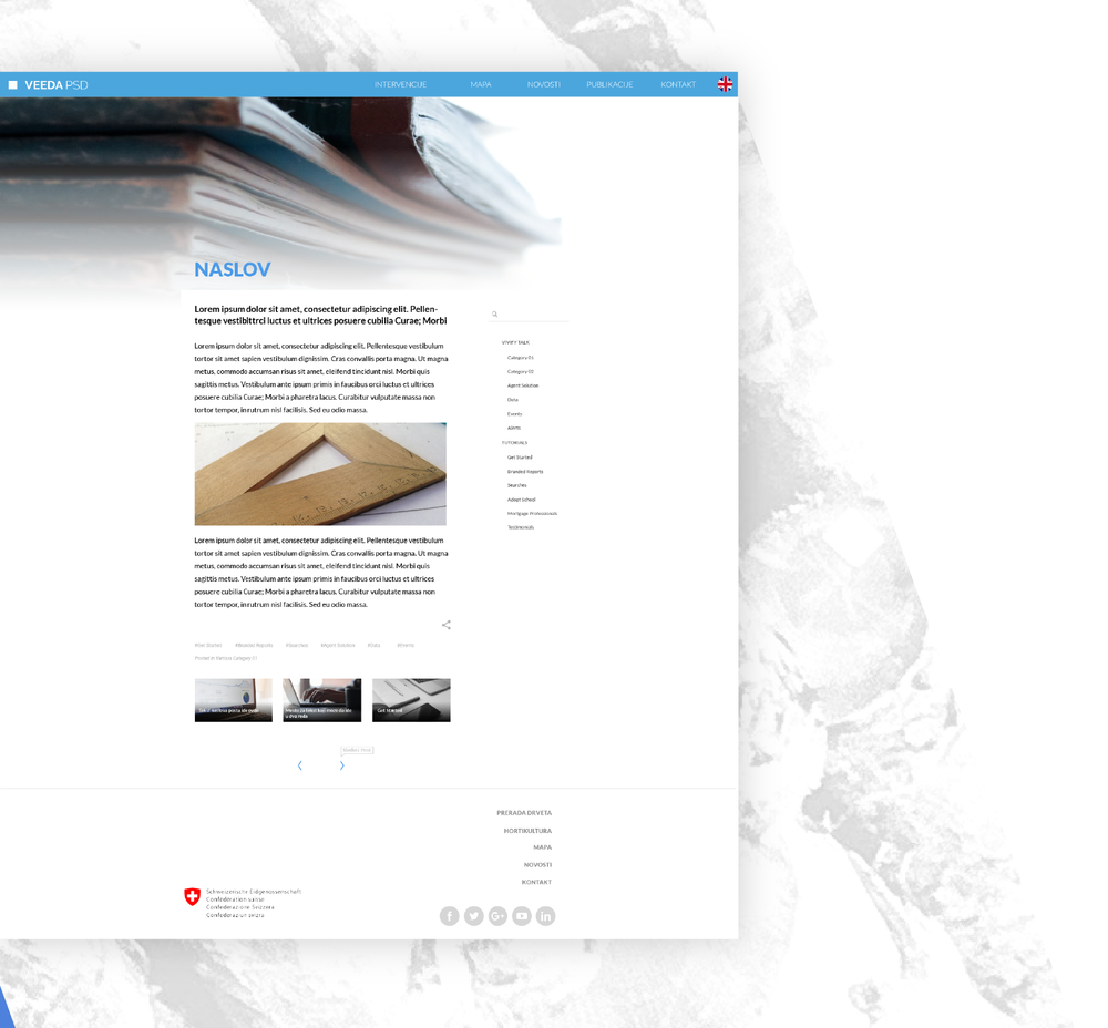 VEEDA-blog page user interface