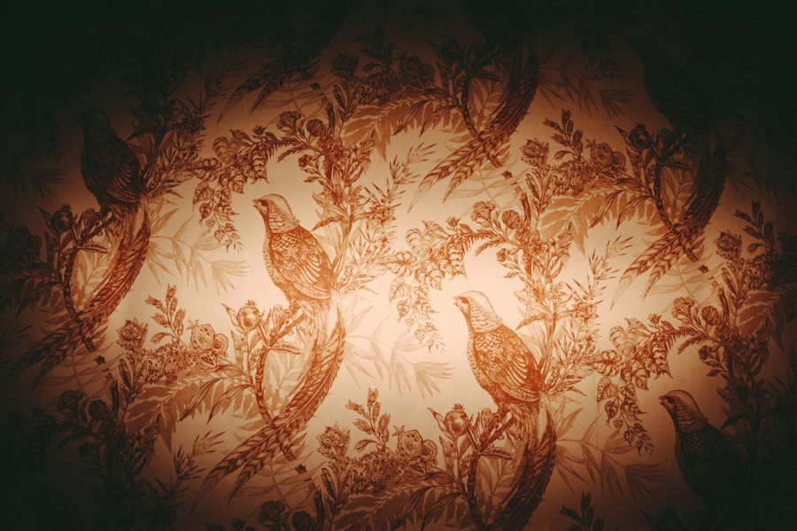 ... a break from all the lovely faces, how much do you love this wallpaper at the Highlands?!