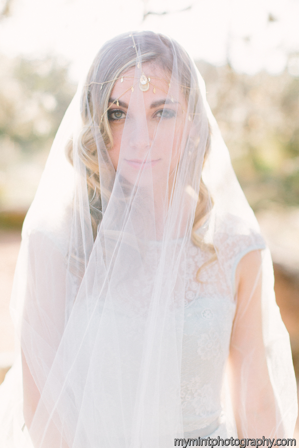 tulle veil with wren hairpiece hushed commotion