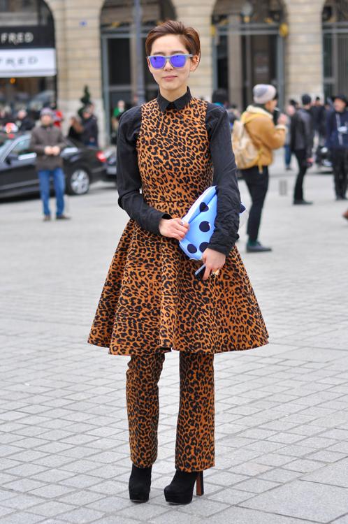 Leopard Mania - Paris