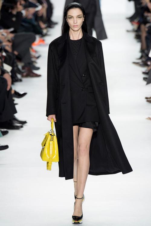 Christian-Dior-RTW-AW14-LOOK-2.jpg