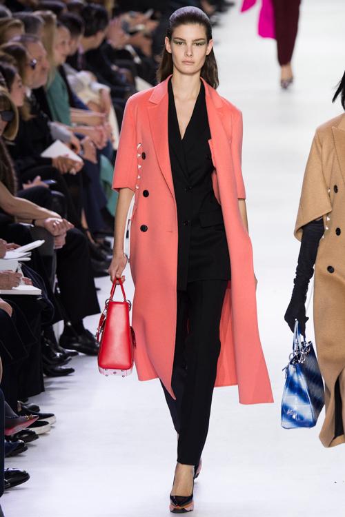 Christian-Dior-RTW-AW14-LOOK-5.jpg