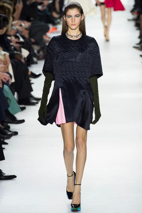 Christian-Dior-RTW-AW14-LOOK-9.jpg