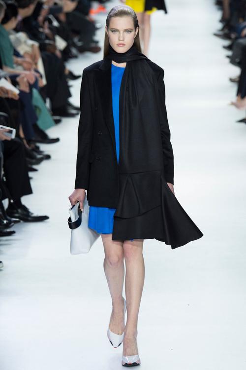 Christian-Dior-RTW-AW14-LOOK-12.jpg