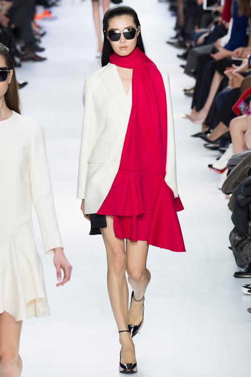 Christian-Dior-RTW-AW14-LOOK-11.jpg