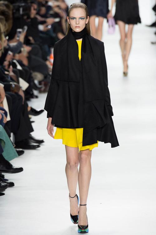 Christian-Dior-RTW-AW14-LOOK-13.jpg